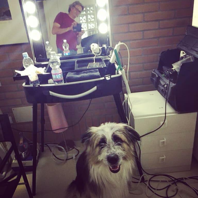 azzurro cane attore pubblicità