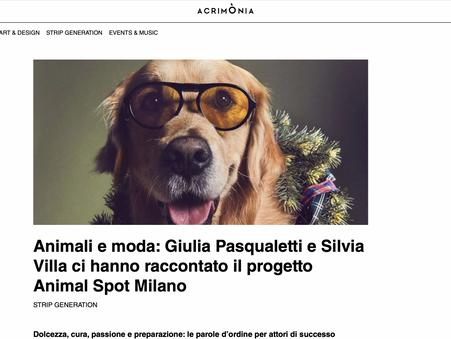 Articolo Acrimonia Animal Spot Milano