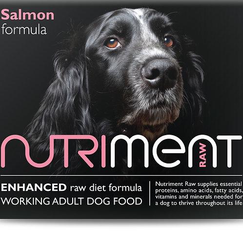 Salmon & Chicken Formula