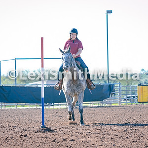 SSC Dec Gymkhana Country Cow Horse