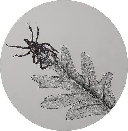 Bella Bug Balm