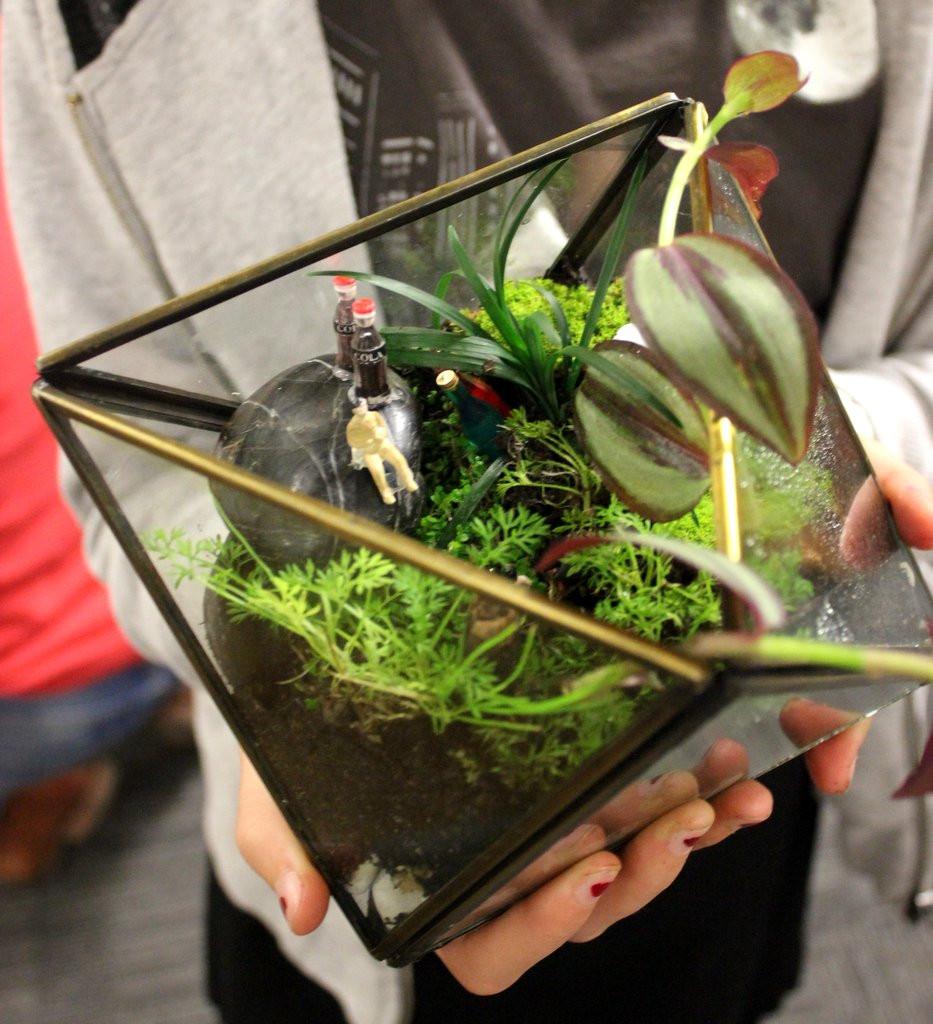 A classbunny terrarium finished