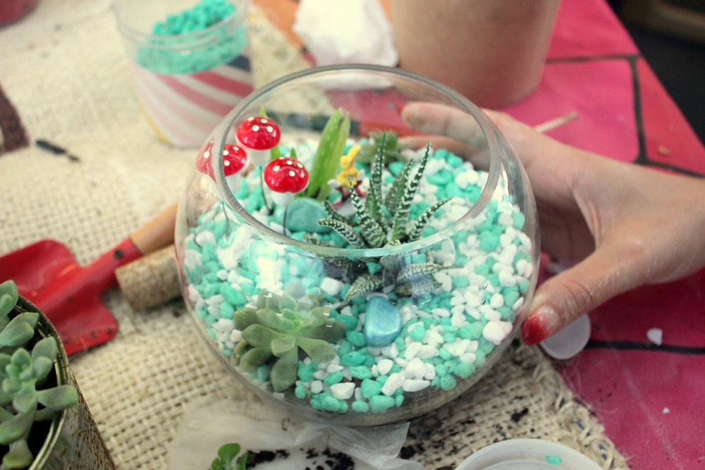 Learn how to make terrariums at a workshop