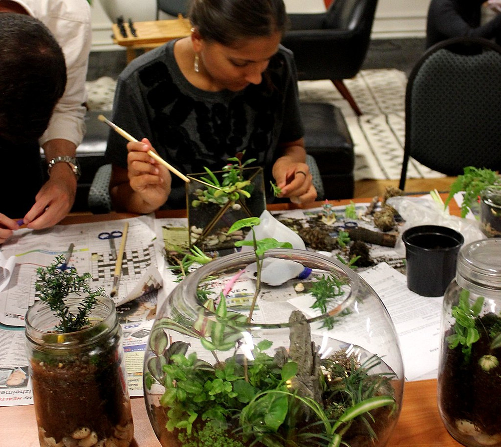 A terrarium workshop is a great team building activity