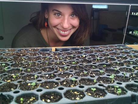 One Mindful Tribe: An Interview with Liz Wagner of Crooked Row Farm