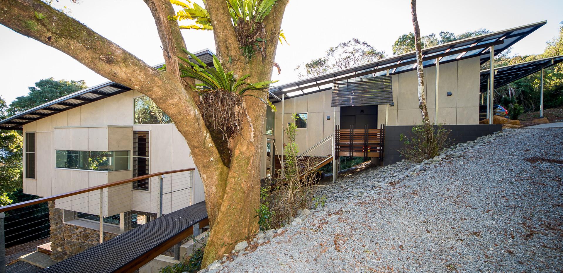 Rainforest House 1