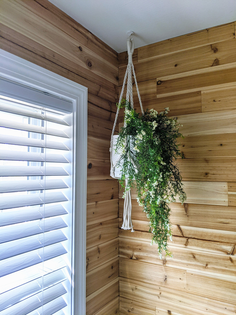 bathroom hanging plant