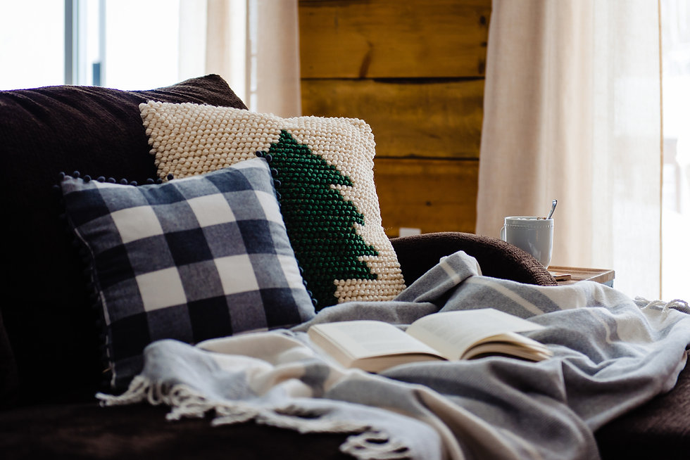 living room couch throw pillows