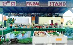 29th street farm.png