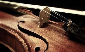 AML Strings Viola