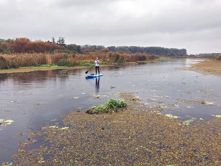 Jesienne pływanie na Odrze – kanał Wydrnik