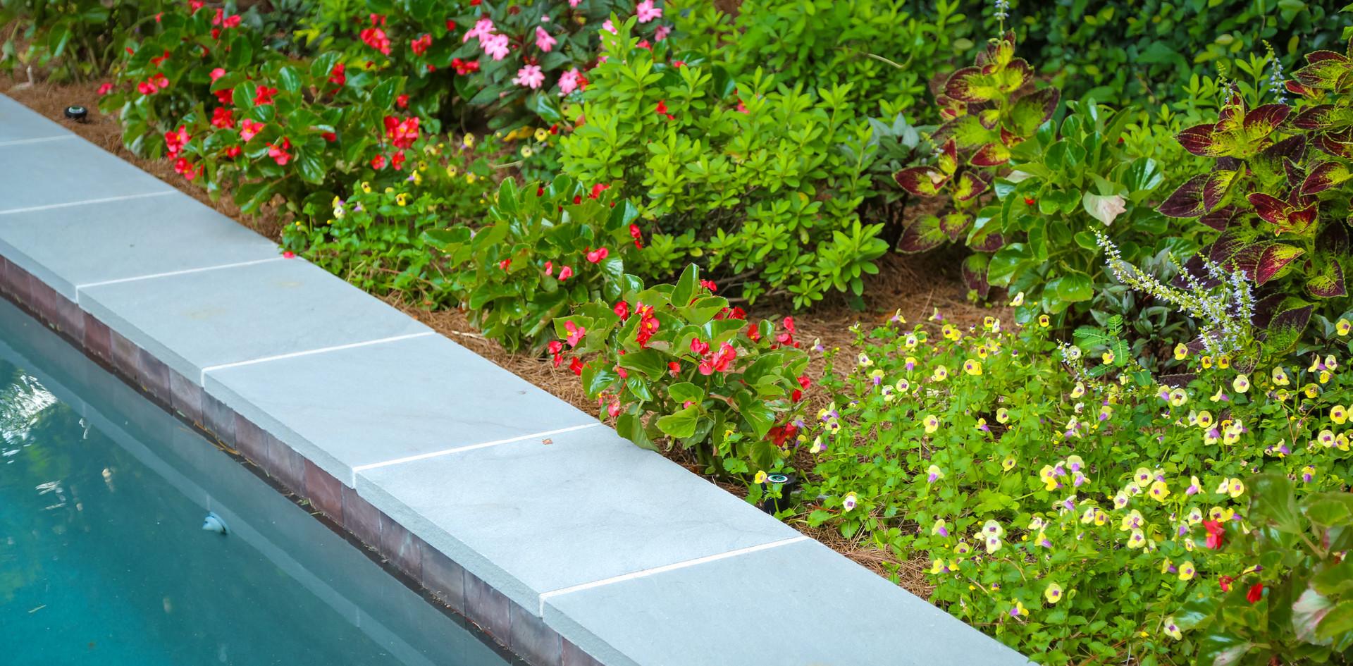 Poolside Garden Design with Seasonal Color