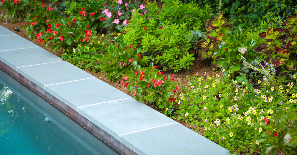Poolside Garden Design with Seasonal Color