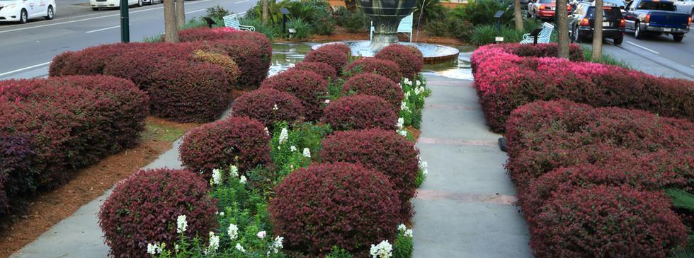 Commercial Landscape and Planting Design