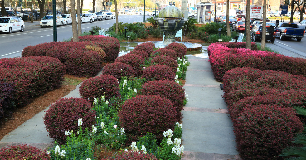 Commercial Landscape and Planting Design