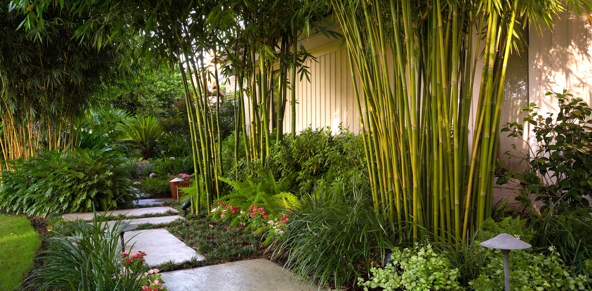 Tropical Landscape Design and Installation