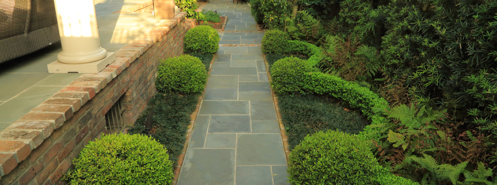 Landscape Path with Curved Boxwoods