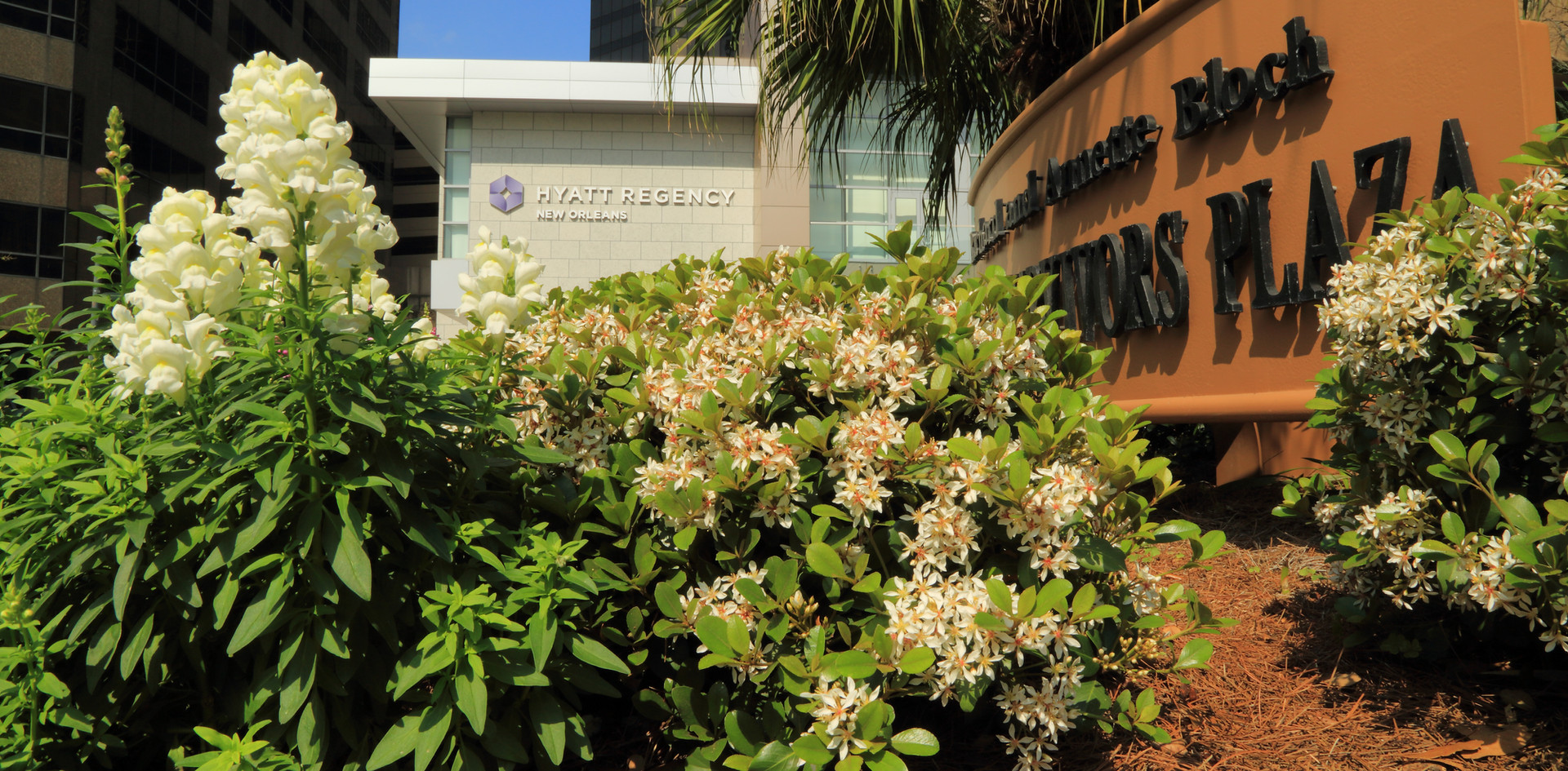 Commercial Landscaping with Seasonal Color