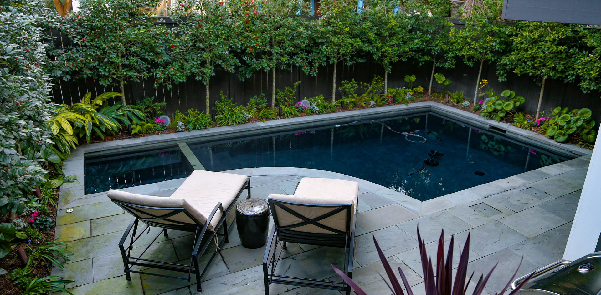 Pool, Patio and Landscaping