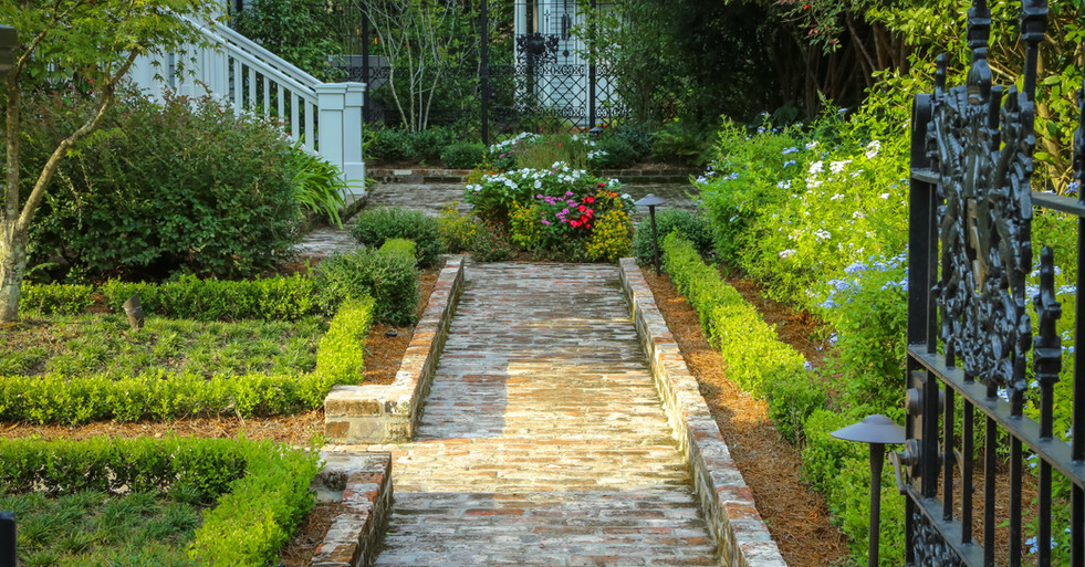 Garden Path and Planting Design