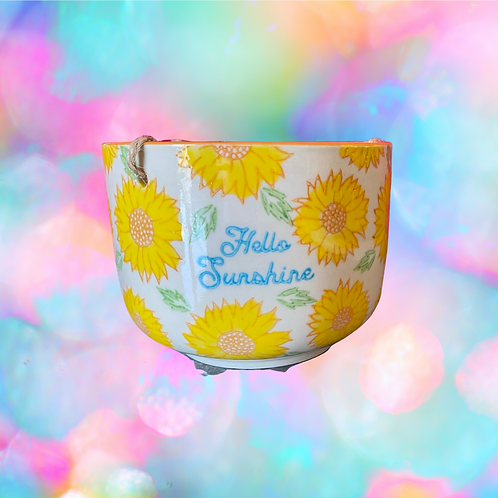 """Hello Sunshine"" Hang Pot"