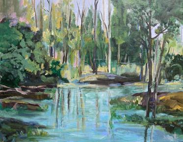 Hirschman's Pond