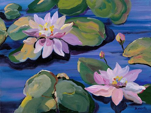 Water Lilies-print