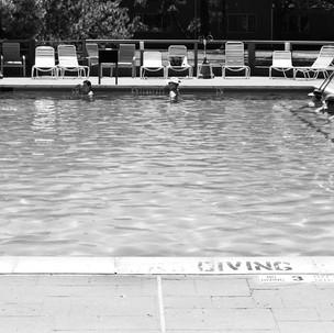 Paul Dempsey - Water Lillies - 10x30 - d