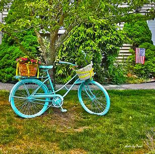 Paul Dempsey-Bicycle-16x24-metal-$600.jp