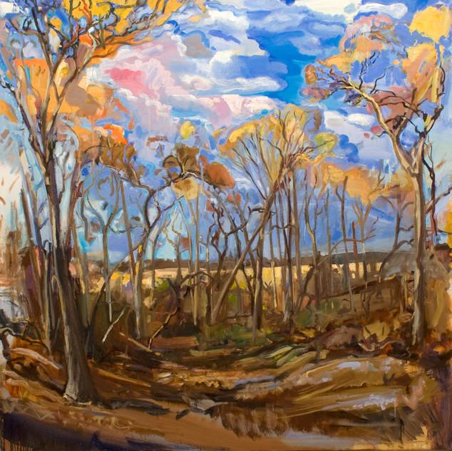 Lieberman  farm view from studio 62 x62b