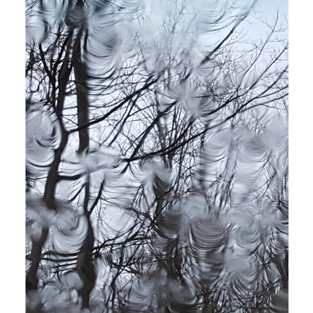 BWB_Water-4_2018_digital print_13 X 11in