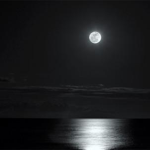 Paul Dempsey -super Moon - 8x10 - glossy