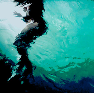 Alcon_Mermaid VI_24x36_Aluminum Photo.jp