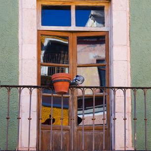 BetsyPinoverSchiff,Window Reflexion Gto.