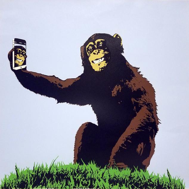 twat selfie monkey.jpg