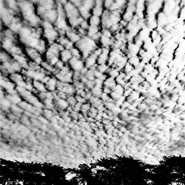 kmc horizon 4.jpg