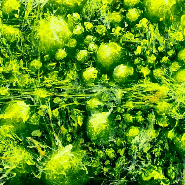 Paul Fuguet Lemon Lucerne .jpg