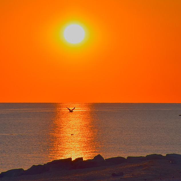 -Sunrise III -12x24