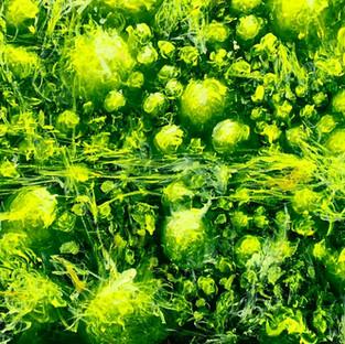 "Paul Fuguet Lemon Lucerne 36""x96"".jpg"