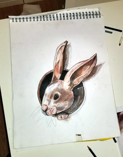 8 year old -Colored Pencil