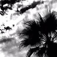 Palm Springs In The Sky #10