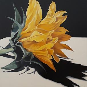 Susan Carlo Fuertr 24x24 oil on canvas 1
