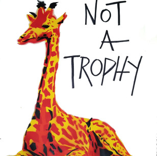k.k. Not  A trophy .jpg