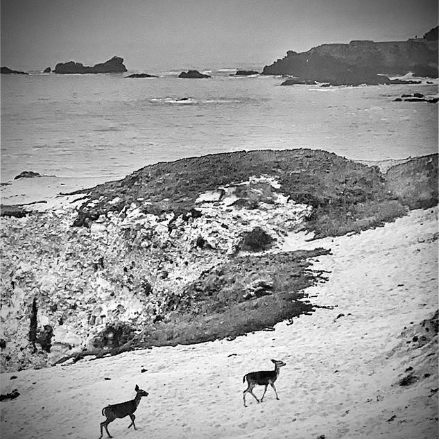 James Bacchi, #inthesky Stillwater Cove