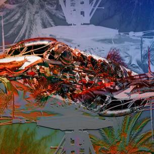 Salton Plane  30 x 13 JimMannix Matte Ph