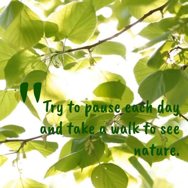 inspirational-nature-quote-design-templa