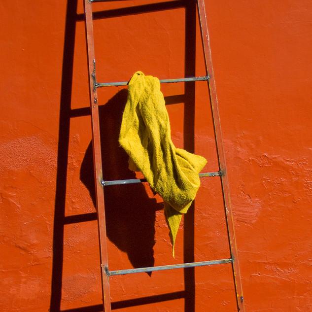 Ladder&Rag_12.5_x_18_3_4__©2020Betsypin