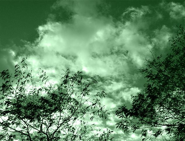 GREEN_SKY_10x7_STOW.jpg