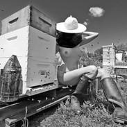The Bee Keeper 1 - small.jpg