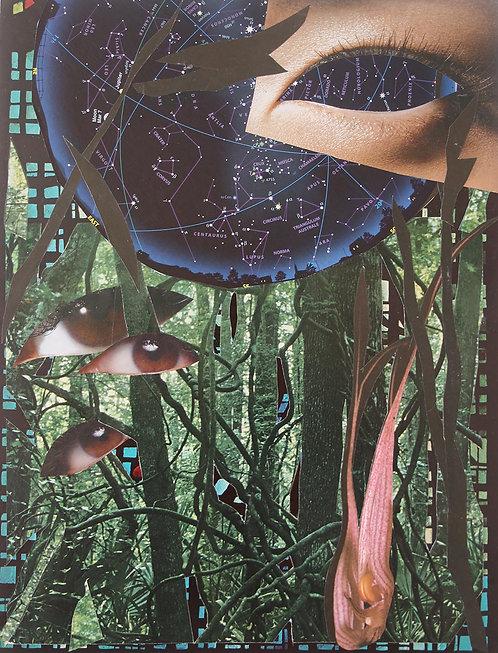 Donna Corvi: Unmasked World